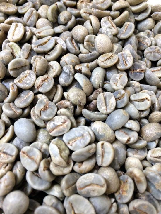 コーヒー生豆ブラジルナチュラル